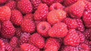 raspberries-vitamins-fruit-food