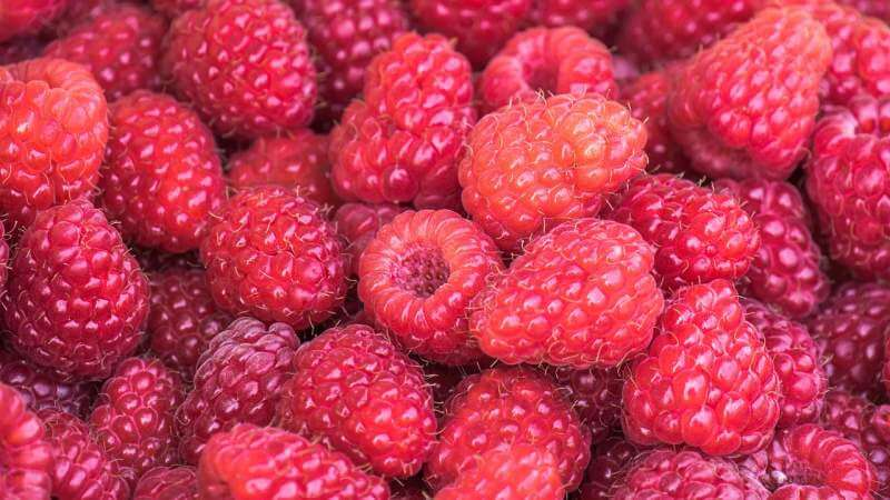 raspberries-vitamins-fruit-food
