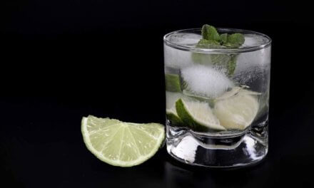 Top 6 Low Carb Cocktail Recipes To Keep Yourself Fit