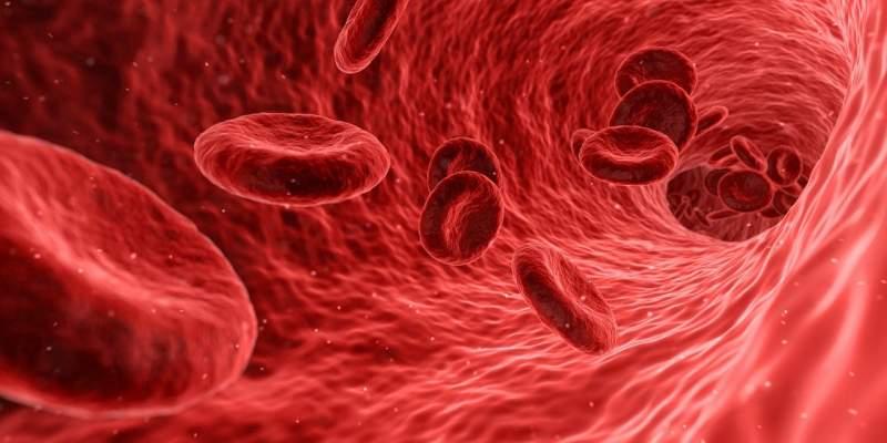 blood-cells-red-medical
