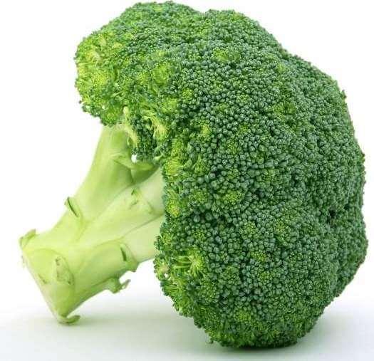 appetite-broccoli