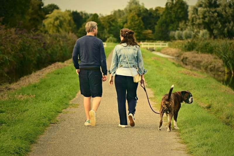 couple-walking-with-dog
