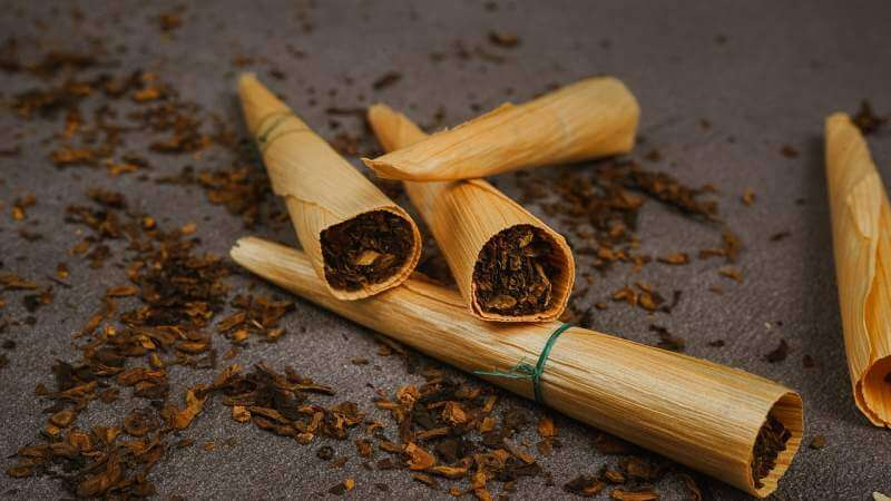 nicotine-leaf-cigar-filter-tobacco