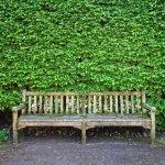 wooden-bench-seat-sitting