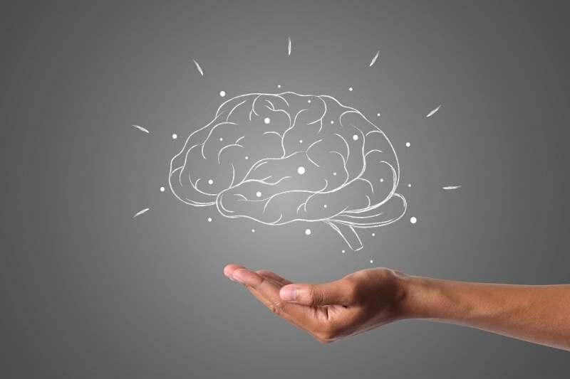 brain-hand-grey